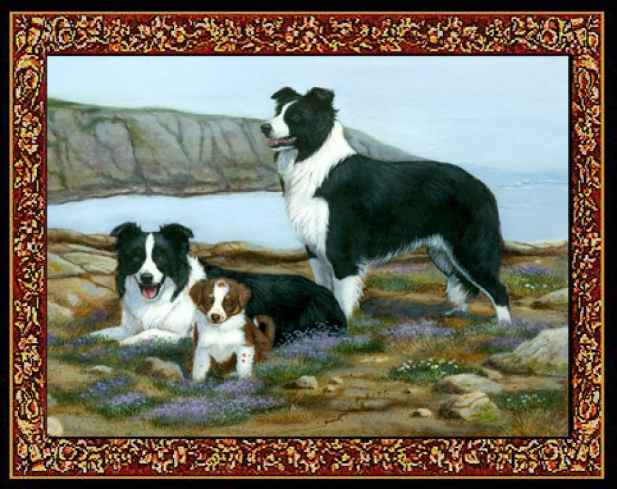 Border Collie Tapestry Placemat #5 - Single