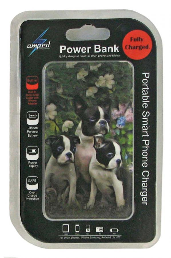 Boston terrier 3-pbk package