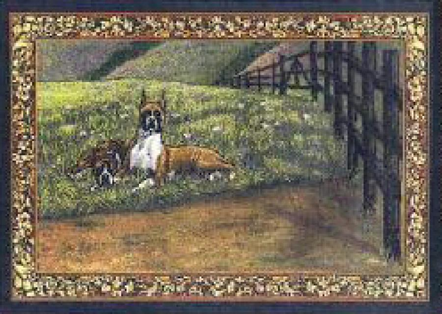 Boxer 4 Single Tapestry Placemat