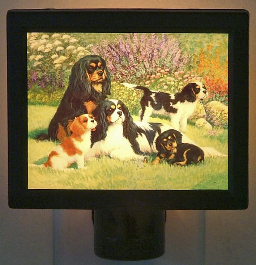 Cavalier Picture Nightlight #5
