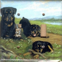 Rottweiler Picture Double Light Switch Plate #3A