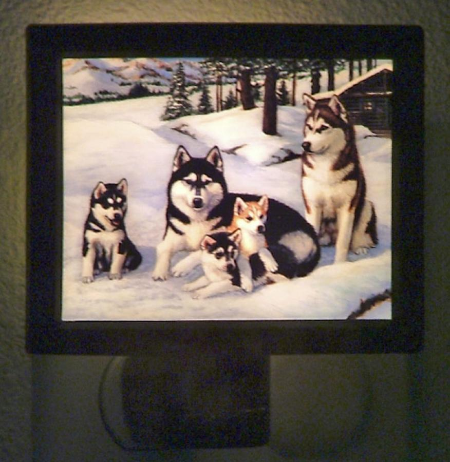Siberian Husky Picture Nightlight #3