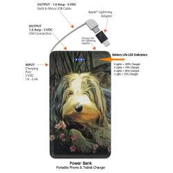 Bearded Collie 23-pbk