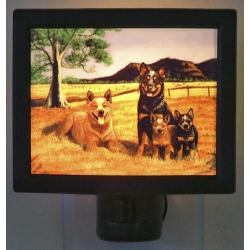 Australian Cattle Dog Nightlight #1