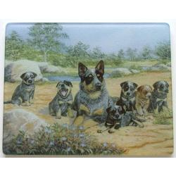 Australian Cattle Dog 3 Tempered Glass Cutting Board