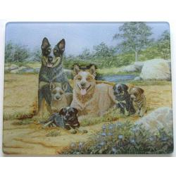Australian Cattle Dog 4 Tempered Glass Cutting Board