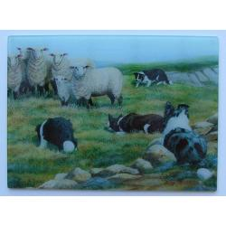 Border Collie cutting board 4
