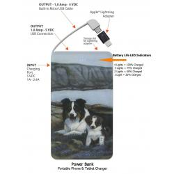 Border collie power bank