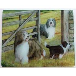 Bearded Collie 4 Tempered Glass Cutting Board