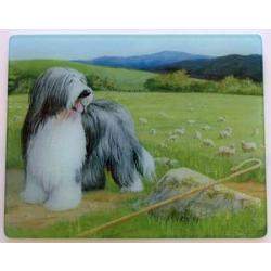 Bearded Collie 5 Tempered Glass Cutting Board