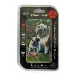 Bulldog power bank package