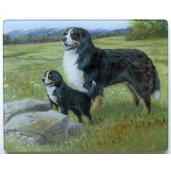 Bernese Mt Dog 5 Tempered Glass Cutting Board