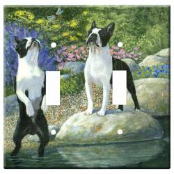boston terrier 1b dlsp