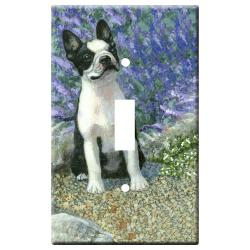 Boston terrier 1b-slsp