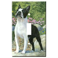 Boston terrier 1C slsp