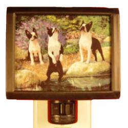 Boston Terrier Nightlight #1