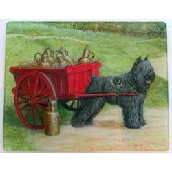 Bouvier 1 Tempered Glass Cutting Board