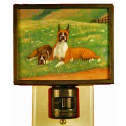 Boxer Picture Nightlight #4