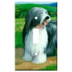 Bearded collie 5a-slsp