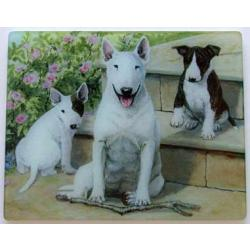 Bull Terrier Tempered Glass Cutting Board #1