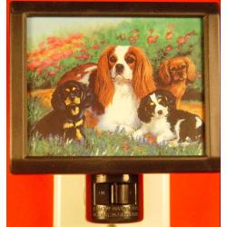 Cavalier  King Charles Spaniel 4 Nightlight
