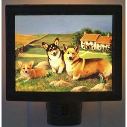 Corgi, Pembroke Nightlight