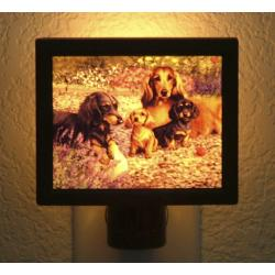 Dachshund Picture Nightlight #2