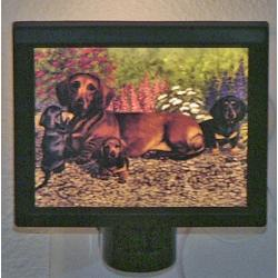 Dachshund Picture Nightlight #4