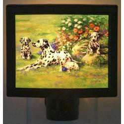 Dalmatian Picture Nightlight #3