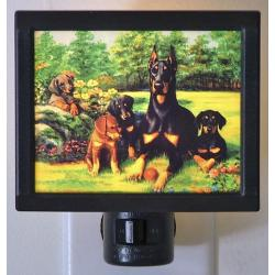 Doberman Pinscher Picture Nightlight #4