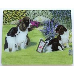 English Springer Spaniel 1 Tempered Glass Cutting Board