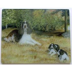 English Springer Spaniel 3 Tempered Glass Cutting Board