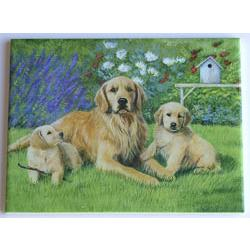 Golden Retriever  Ceramic Picture Tile #1