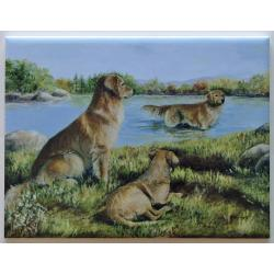 Golden Retriever #2 6X8 Ceramic Picture Tile