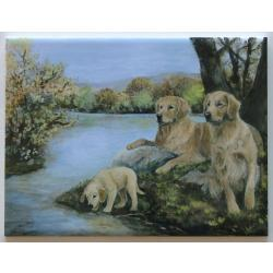 Golden Retriever #4 - 6X8 Ceramic Picture Tile