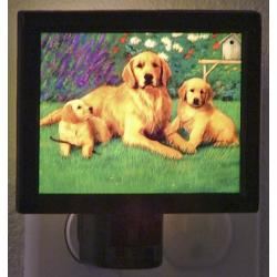 Golden Retriever Picture Nightlight #1