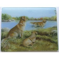 Golden Retriever 2 Tempered Glass Cutting Board