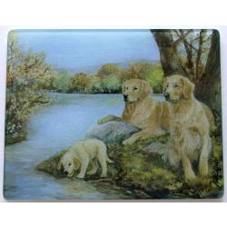 Golden Retriever 4 Tempered Glass Cutting Board
