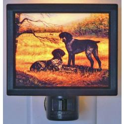 German Shorthair Picture Nightlight #1