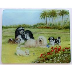 Havanese Glass Cutting Board #2