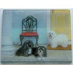 Havanese Glass Cutting Board #3