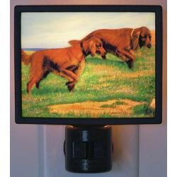 Irish Setter Picture Nightlight #4