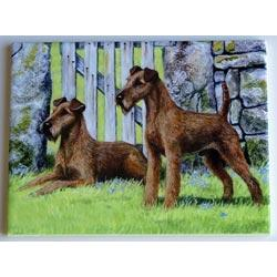 Irish Terrier Picture Tile #1