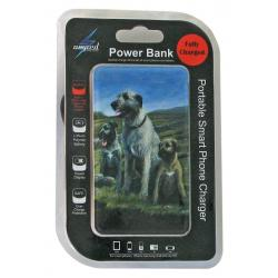 Irish wolfhound 1-pbk package