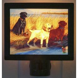 Labrador Retriever Picture Nightlight #1