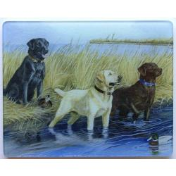 Labrador Retriever 1 Tempered Glass Cutting Board