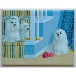Maltese #2 - 6x8 Ceramic Picture Tile
