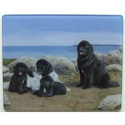 Newfoundland 5 Tempered Glass Cutting Board