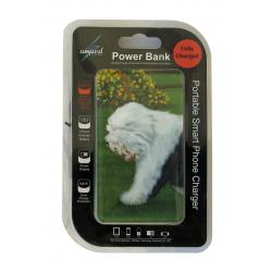OES power bank package