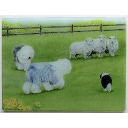 Old English Sheepdog Tempered Glass Cutting Board 3